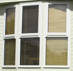 Exceptionnel Mobile Home Windows